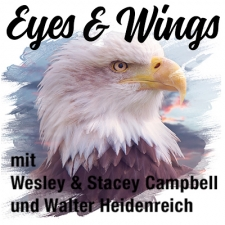 Eyes & Wings