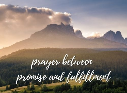 Prayer between Promise and Fulfillment